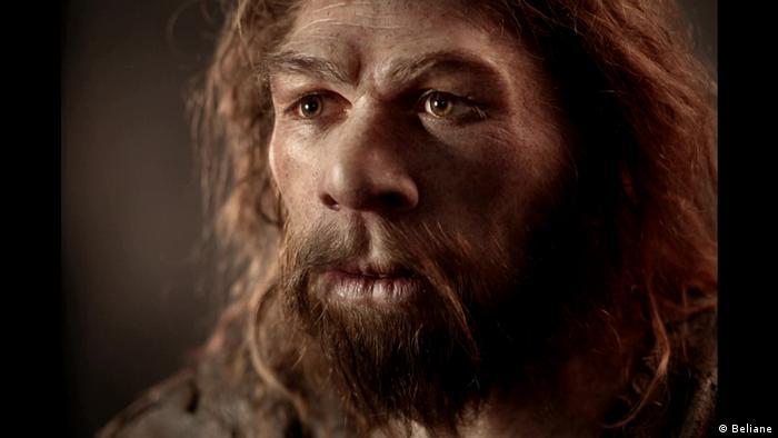 DW Dokumentationen |Der Neandertaler