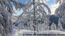 Winterwetter im Hochschwarzwald BdT