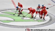 Логотип компании Skoda на ледовом поле во время чемпионата мира по хоккею в 2019 году