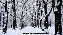 Polen Krakow Winterlandschaft Schneefall