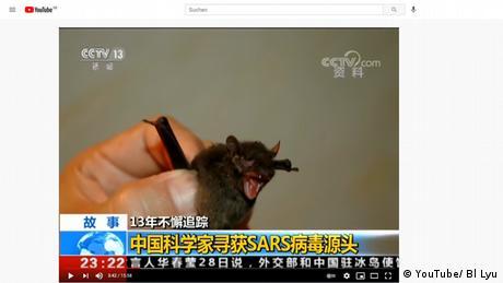Standbild aus einer CCTV Dokumentation von 2017 | Corona Wuhan | Gefangene Fledermaus