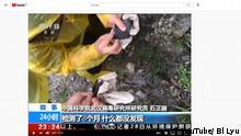Standbild aus einer CCTV Dokumentation von 2017 | Corona Wuhan | Fledermaus wird untersucht