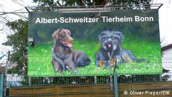Bonn | Albert Schweitzer Tierheim