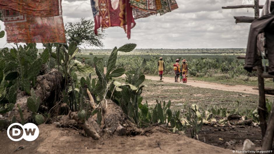 Dürre Afrika 2021