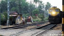 Living Planet | Goa | Kohle