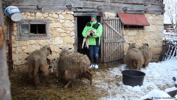 Milan Ognjenović aus dem Dorf Švrakarica bei Sisak in Kroatien, hier mit seinen Schafen. Sein Haus wurde schwer beschädigt während des Erdbebens Ende Dezember 2020, das Mittelkroatien getroffen hat.