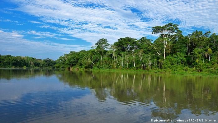 Parque del Manu (Perú). Organizaciones medioambientales y derechos humanos argumentan que la meta del 30% se ha fijado sin llevar a cabo una evaluación previa del impacto social.