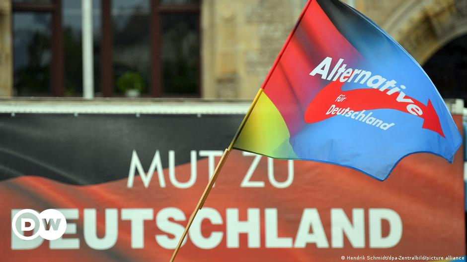 German court suspends surveillance of far-right AfD, for now