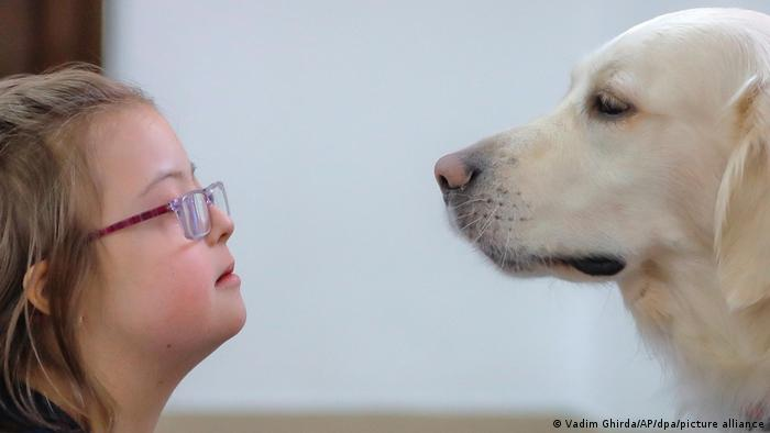 A dog and child during an animal therapy session for children with Down syndrome