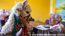 Tiertherapie | im Hospizbewohner