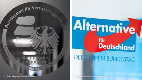 The BfV and the AfD