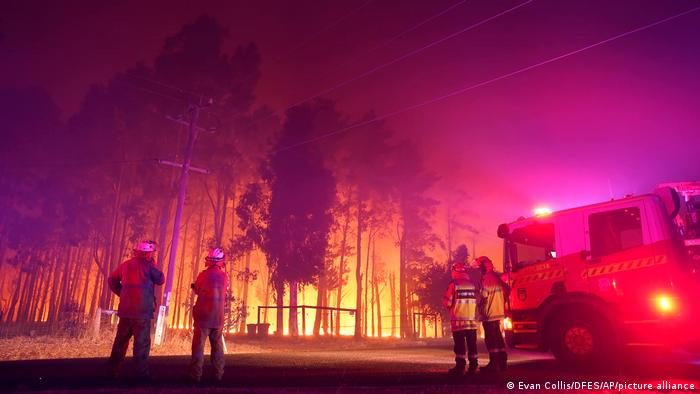Firefighters stand next to a fire truck in front of a burning forest