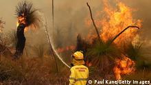 Australien Waldbrände Feuer Buschfeuer