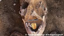 A handout picture released by the Egyptian Ministry of Tourism and Antiquities on January 29, 2021 shows a 2,000-year-old mummy with a gold foil amulet inside his mouth uncovered at the Taposiris Magna Temple in western Alexandria. - The Egyptian-Dominican mission of the University of Santo Domingo headed by Dr. Kathleen Martinez, working at the Taposiris Magna Temple in western Alexandria, succeeded in discovering 16 burials in the rock-cut tombs (burial shafts) that were popular in the Greek and Roman eras. Within these shafts were a number of mummies in a poor state of preservation, inside is what highlights the characteristics of mummification in the Greek and Roman eras, as it was found remnants of gilded cartonnage in addition to amulets of gold foil in the form of a tongue that were placed in the mouth of the mummy in a special ritual to ensure their ability to speak in the after life before the Osirian court. (Photo by - / Egyptian Ministry of Antiquities / AFP) / === RESTRICTED TO EDITORIAL USE - MANDATORY CREDIT AFP PHOTO / HO / EGYPTIAN MINISTRY OF ANTIQUITIES- NO MARKETING NO ADVERTISING CAMPAIGNS - DISTRIBUTED AS A SERVICE TO CLIENTS ==