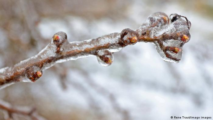 Последствия ледяного дождя в районе города Зиген