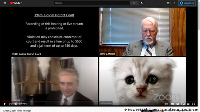 Who let the cat in? A kitten appears during a district court hearing on Zoom