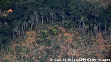 Waldbrände im Amazonas Brasilien