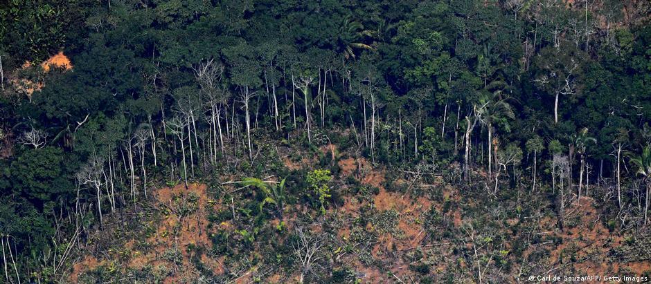 Clareira desmatada na Floresta Amazônica
