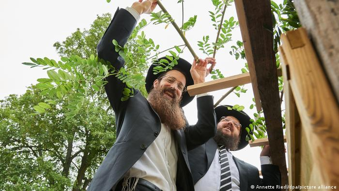 Two rabbis building a sukkah