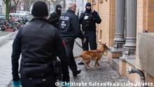 police take a sniffer dog in to search a house in Berlin