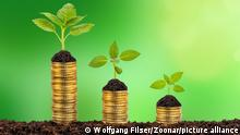 Wachstum als Chart mit Münzen und Pflanzen Symbolbild