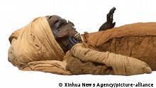 Ägypten I Mumie I King Seqenenre