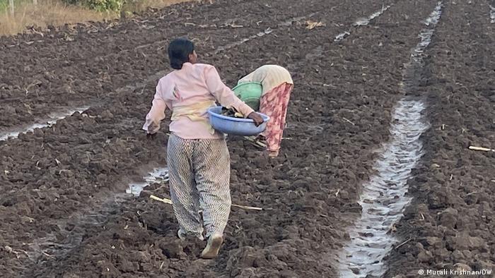 Living Planet  Indien Frauen in der Landwirtschaft