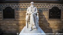 BG Charles Darwin | Abstammung des Menschen und die Selektion in Bezug auf das Geschlecht