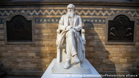 Charles Darwin statue in the main hall of the Natural History Museum in South Kensington in London