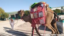 Kamelbibliothek von Hanifa Abdul Samad | in Mand