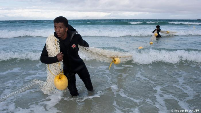 Members of the Shark-spotter crew pull in the exclusion net at Fishoek beach