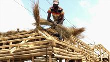 DW Eco Africa | DYB Nigeria Bamboo