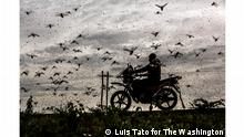 World Photography Award 2021 - Luis Tato (Spanien)