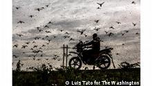 World Photography Award 2021 - Luis Tato (Испания)