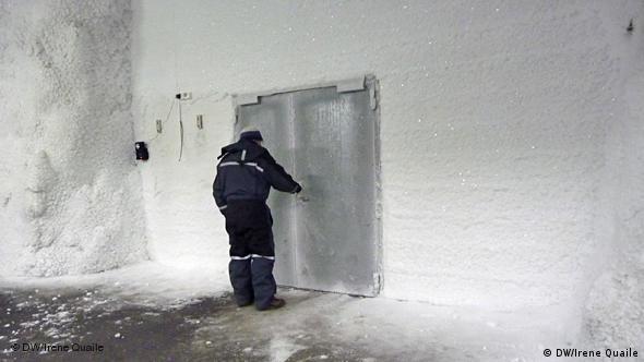 Svalbard Spitzbergen Nahrungsmittelsicherheit Flash-Galerie