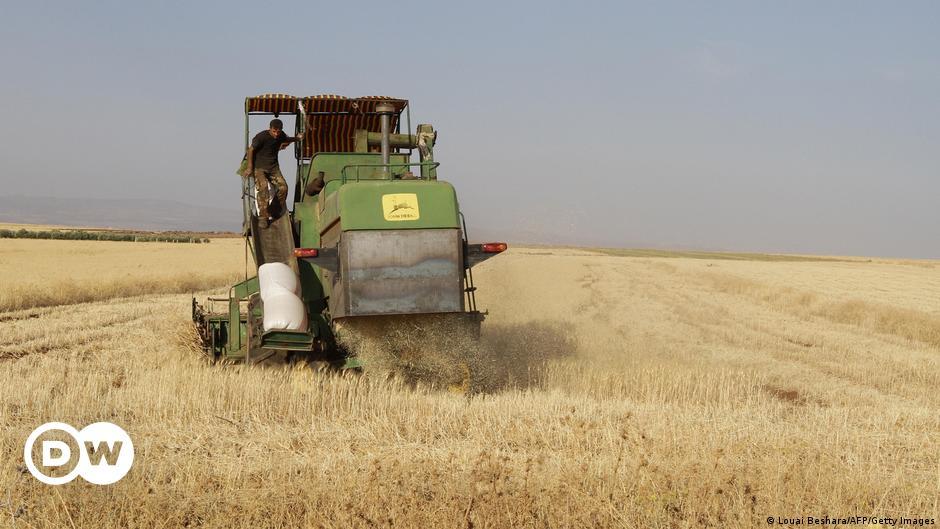 الأمم المتحدة ومنظمة خيرية تحذران من تفاقم أزمة الجوع في سوريا