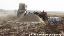 Syrien | Landwirtschaft | Dürre 2010