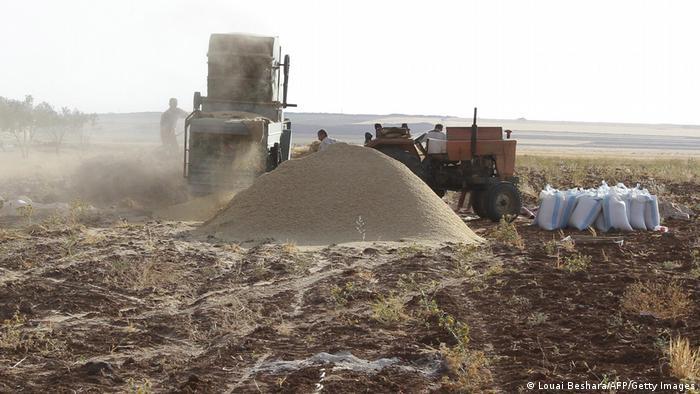 Trabalhadores e equipamento agrícola em campo seco
