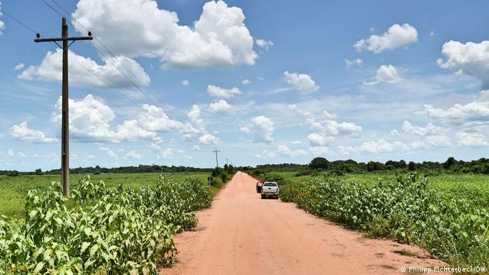 Seca no Pantanal