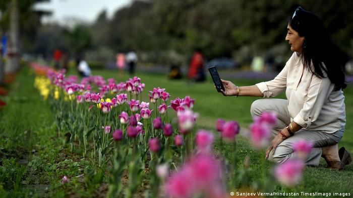 BdTD Indien Blumen in Neu-Delhi