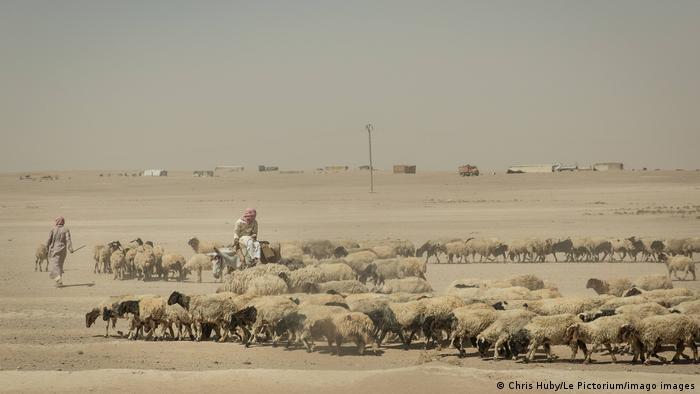 سوريا قرب مخيم في الرقة