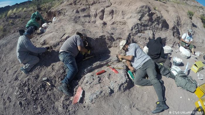 Argentinien Ausgrabung von Dinosaurier Knochen