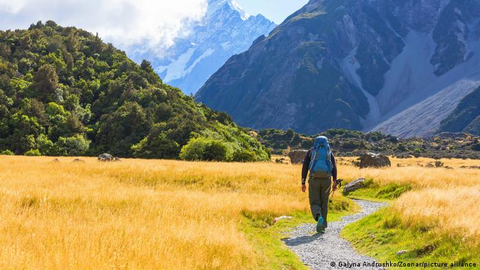 Hiker with a backpack walking through a meadow with mountains in the background, Mount Cook, New Zealand