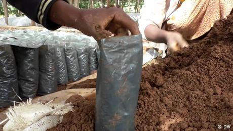 EcoAfrica_Ruanda Tubes