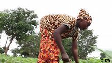 EcoAfrica Ghana Farmer