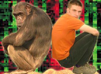 Afe und Mensch Rücken an Rücken vor rot-grünem Hintergrund (Foto: MPI)