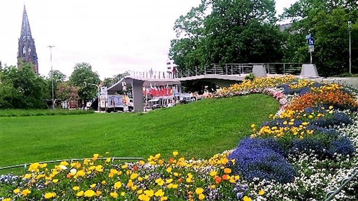 Blog-Beitrag: Meine Studien- und Forschungszeit in Freiburg