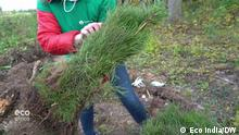 Eco India - A passion for reforestation in Russia