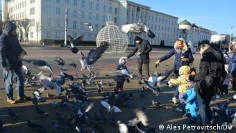 Взрослые и дети кормят голубей на улицах Бреста