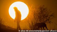 05.03.2021, Hannover - Ein Mann spaziert mit einem Hund bei Sonnenaufgang über einen Feldweg.